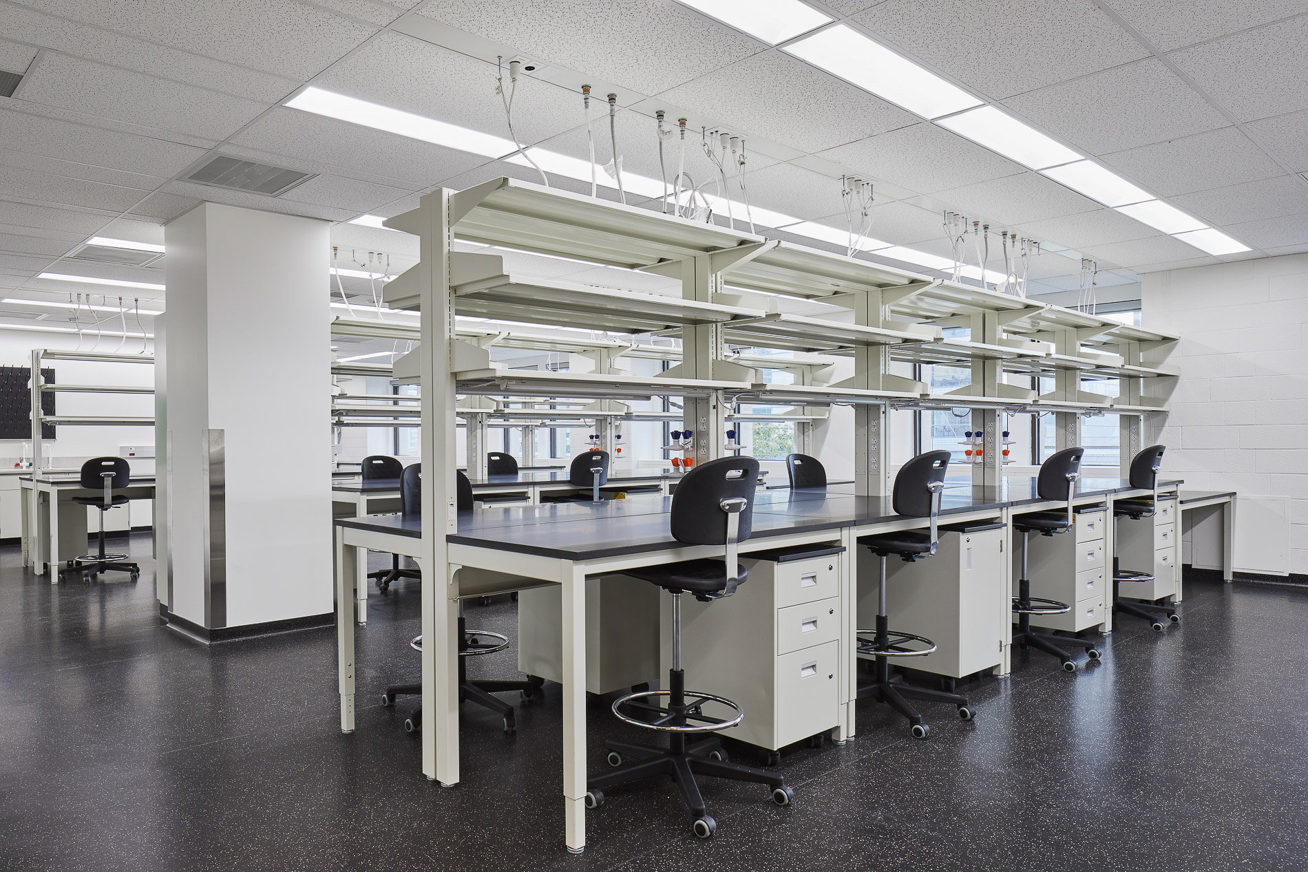 Newly renovated labs in the Medical Sciences Building (Younes Bounhar, doublespace photography)