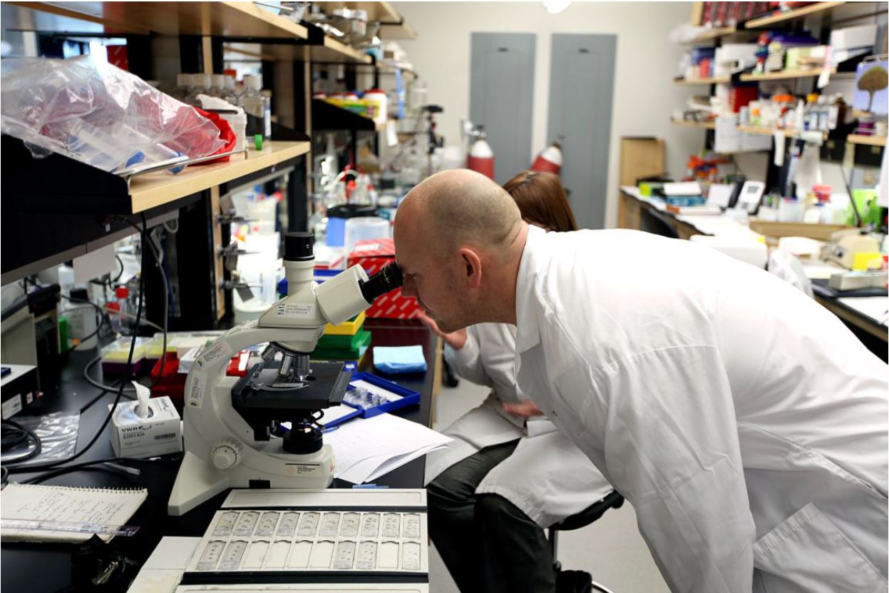 Mats Sundin in research laboratory