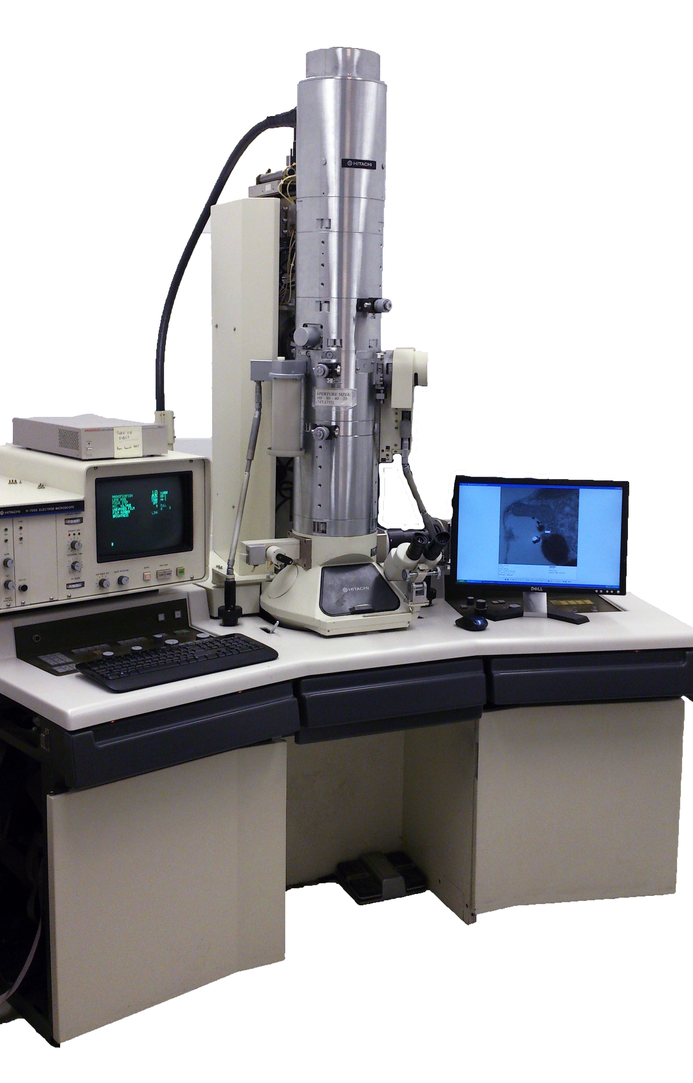 Transmission Electron Microscopy (TEM) | Faculty of Medicine