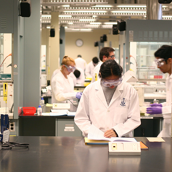 Faculty of Medicine Students in the Lab